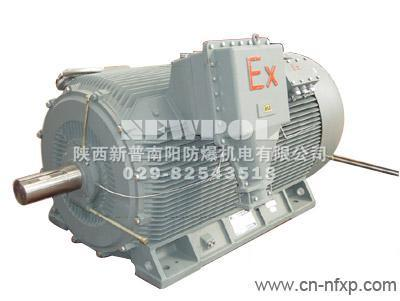 YB2seris High voltage flameproof Three Phase Asynchronous Motor