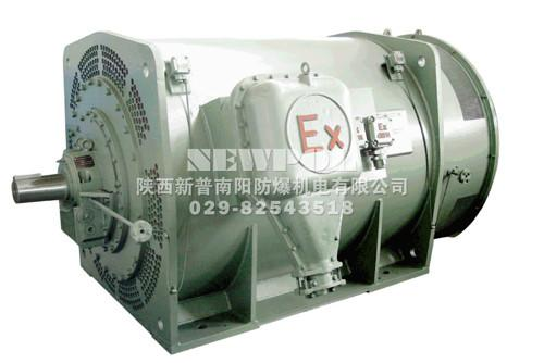 YB355-900 series High voltage(6KV,10KV) flameproof Three Phase Asynchronous Motor