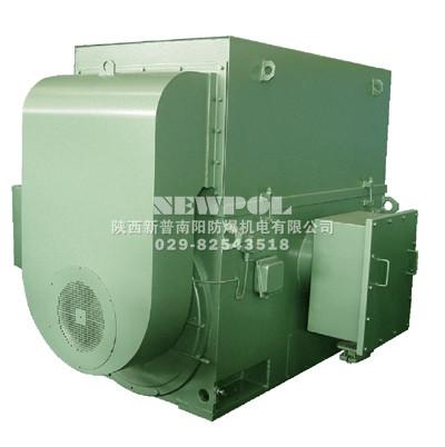 YTM YHP YMPS系列6kv磨煤机用电动机