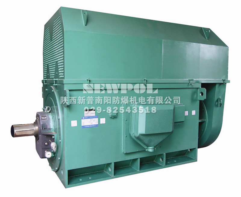 YKK series(710-1000) High voltage Three Phase Induction Motors