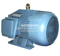 YA series Increased-safety Three Phase Induction Motors
