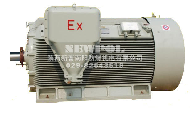 YAXn series Increased-safety High voltage High-efficiency Three Phase Induction Motors/></a><p align=