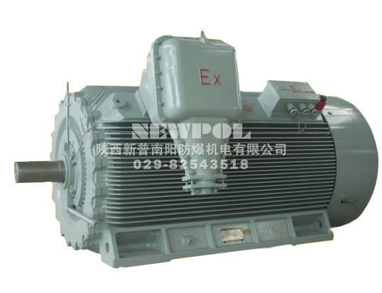 YBX3 series High voltage High-efficiency flameproof Three Phase Induction Motors