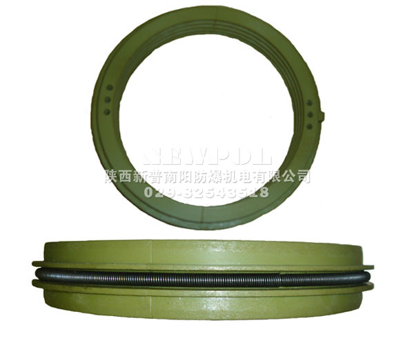 High voltage motors seal ring