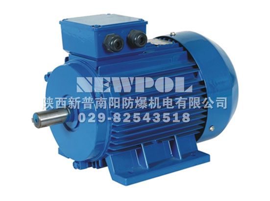 YVF2 series Variable-frequency adjustable-speed Three Phase Induction Motors